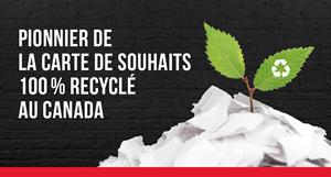 Carton recyclé à 100 %